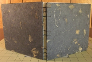 Coptic bound book #2 with handmade Thai mango paper